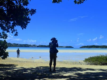 8月8日。島唄の景色