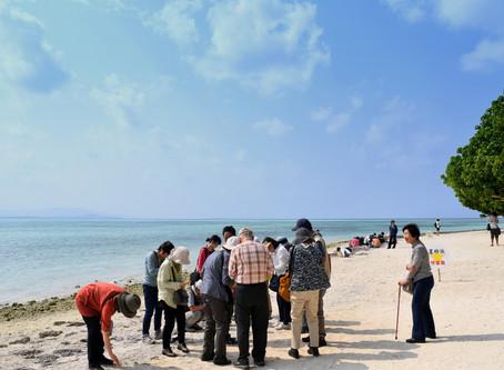 3月14日。八重山諸島をゆったり満喫