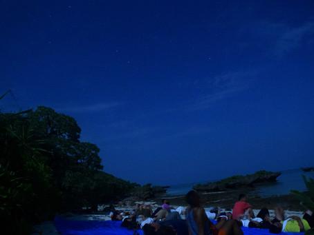 8月12日。月夜のペルセウス座流星群