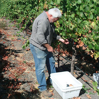bob_in_h_vineyards_1_c0d869d8-bcce-40b3-