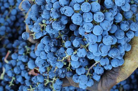 97 POINTS - #77 2010 Mt. Veeder Cabernet Sauvignon