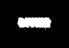 divine-logo-blanc sans trait.png