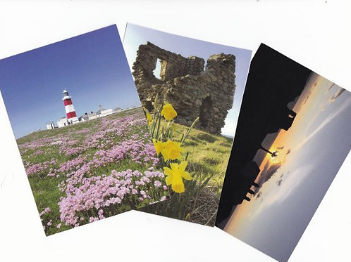 Pecyn o 5 Cerdyn post / Pack of 5 post cards