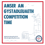 cystadleuaeth_competition.PNG