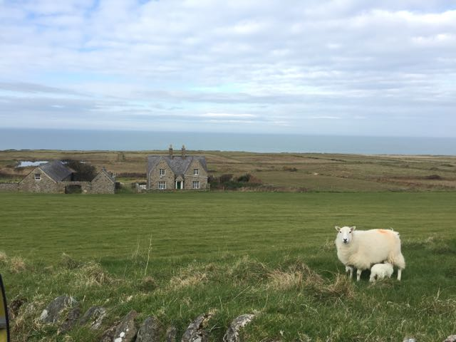 View of Carreg Fawr