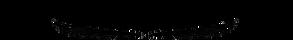 Soren Logo2.png