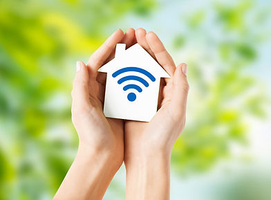 The EvolveODM EcoSystem, Global Wifi & B