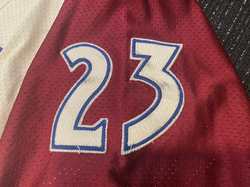 1998-1999Hejduk23Right Arm Numbers