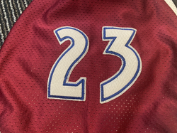 1998-1999Hejduk23Left Arm Numbers