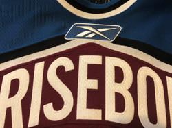 2005-2006Brisebois71Reebok Logo