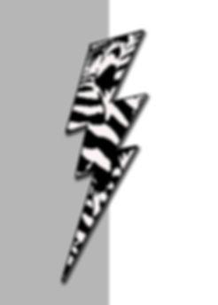 POP - Zebra - BLIXT .jpg