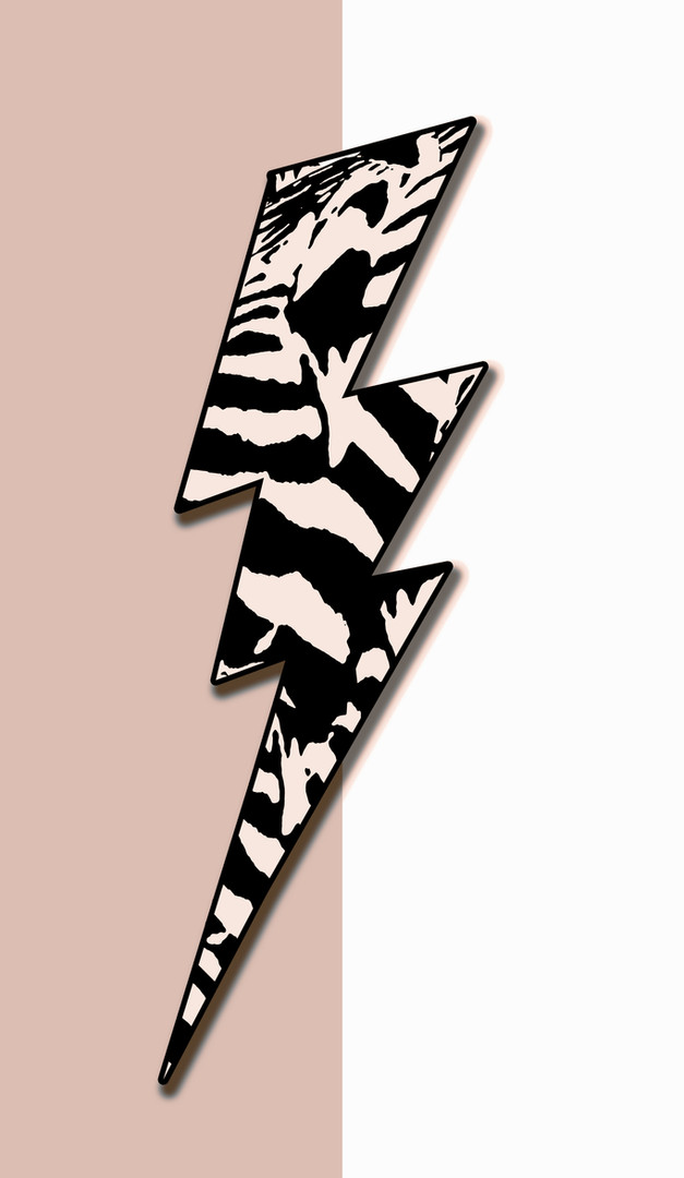 POP - Zebra - BLIXT - GAMMELROSA.jpg