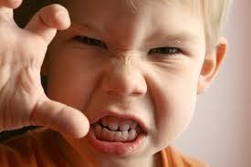 Quatro Fatores para o Comportamento Agressivo das Crianças