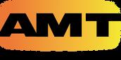 AMT-GRAD.png