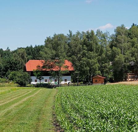 Mostschänke nahe Holzöstersee. Nettes Restaurant für Feiern.