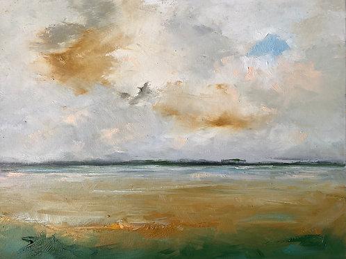 'Wetland Skies'