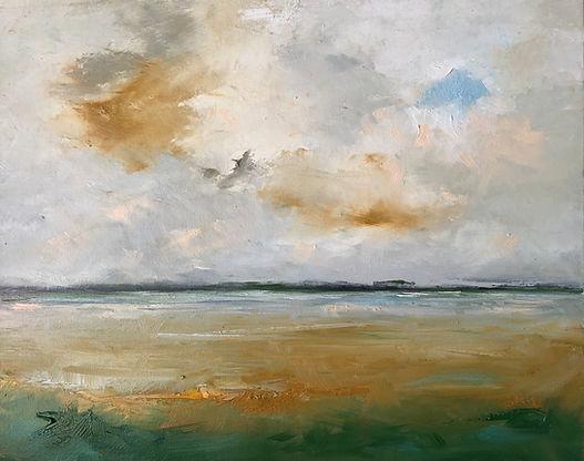 Wetland Skies