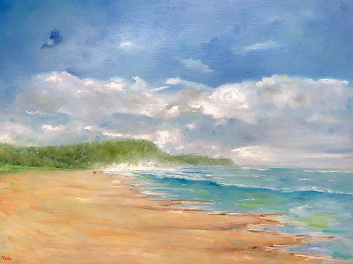 A Walk on Sunshine Beach