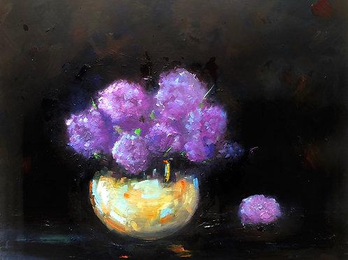 ' Hydrangeas '