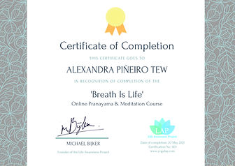 yogalap_certificate_no903_user6950_cours