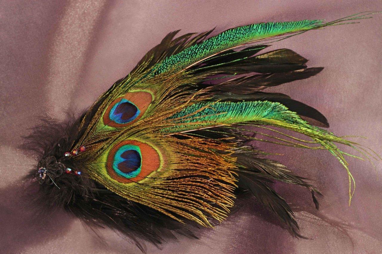 $40 Peacock Fascinator 2.jpg