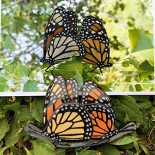 """Monarchs in Love"" Belt Buckle"