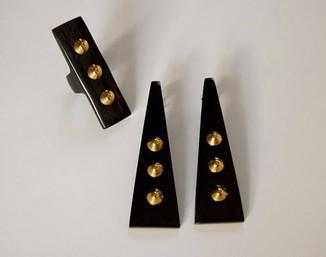 Buffalo Horn Ring and Earrings