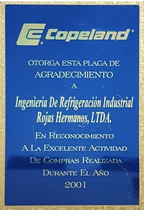 Certificado Copelan 2001_edited.jpg