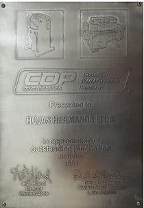 Certificado Copelan 1991_edited.jpg