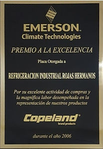 Certificado Emerson 2006_edited.jpg