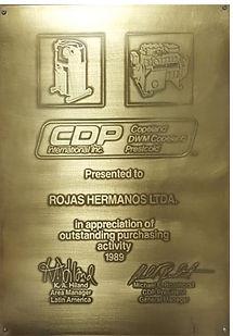 Certificado Copelan 1989_edited.jpg