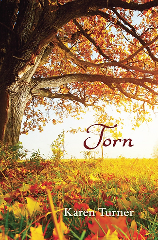 Torn_FrontCover.png
