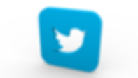 twitter-1848505_1280.png