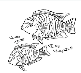 fish msall.PNG