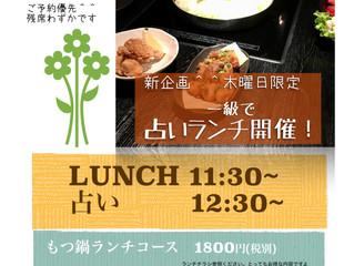 11/22(木)占いランチ!