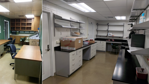 Lab space before and after renovations