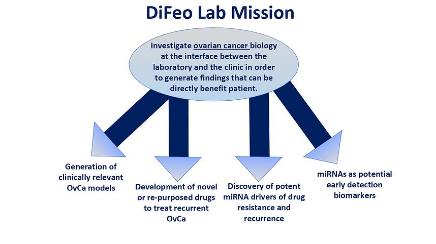 Difeo Lab Goals