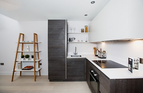Design and Build Construction Company in Chiswick