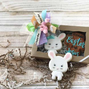 Silly Rabbit Easter Decorated Cookies