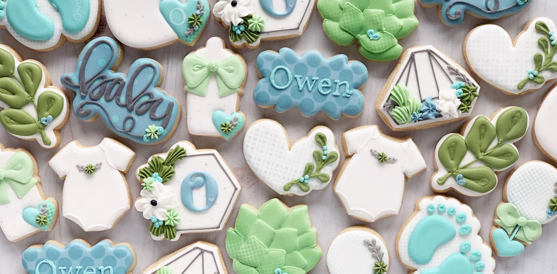 Owen's Baby Shower Cookies.JPG