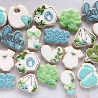 Succulent Baby Boy Cookies