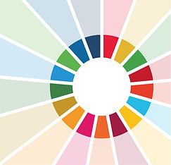 SDG Wheel Conference.png