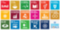 SDGs_Bild_for_GAIA_Eintrag.png