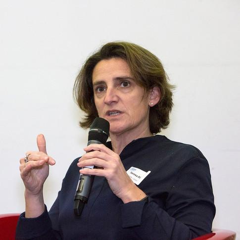 Teresa Ribera, IDDRI
