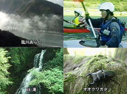 大自然を捉えた3D映像