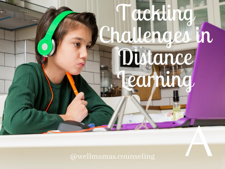 Tackling Challenges in Distance Learning