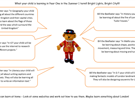 What are we learning this term in Year 1?