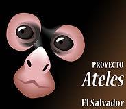 Proyecto Ateles