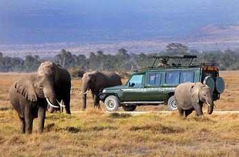 Afrika 3.jpg