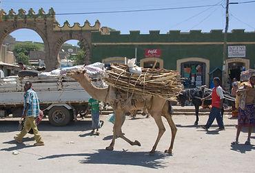 Market,_Dire_Dawa,_Ethiopia_(2058347687)